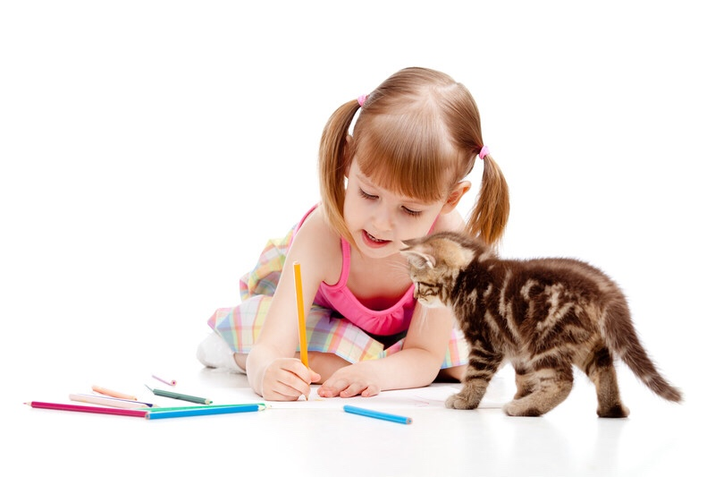 Little girl drawing with her cat watching.
