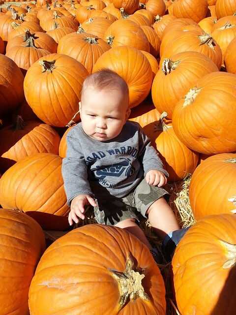 Child surrounded by pumpkins.