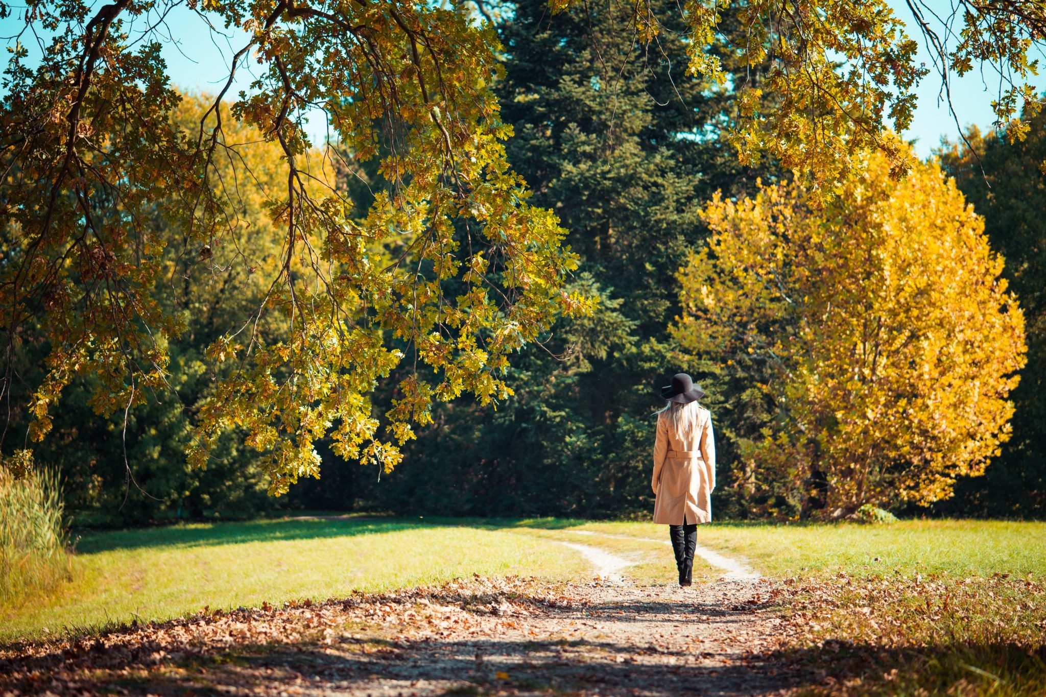 Woman walking in park enjoying nature