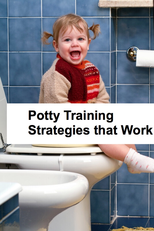 Potty Training Strategies pin