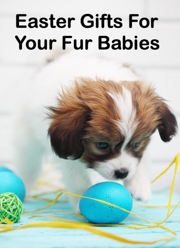 Easter Gifts for Fur Babies dog pin