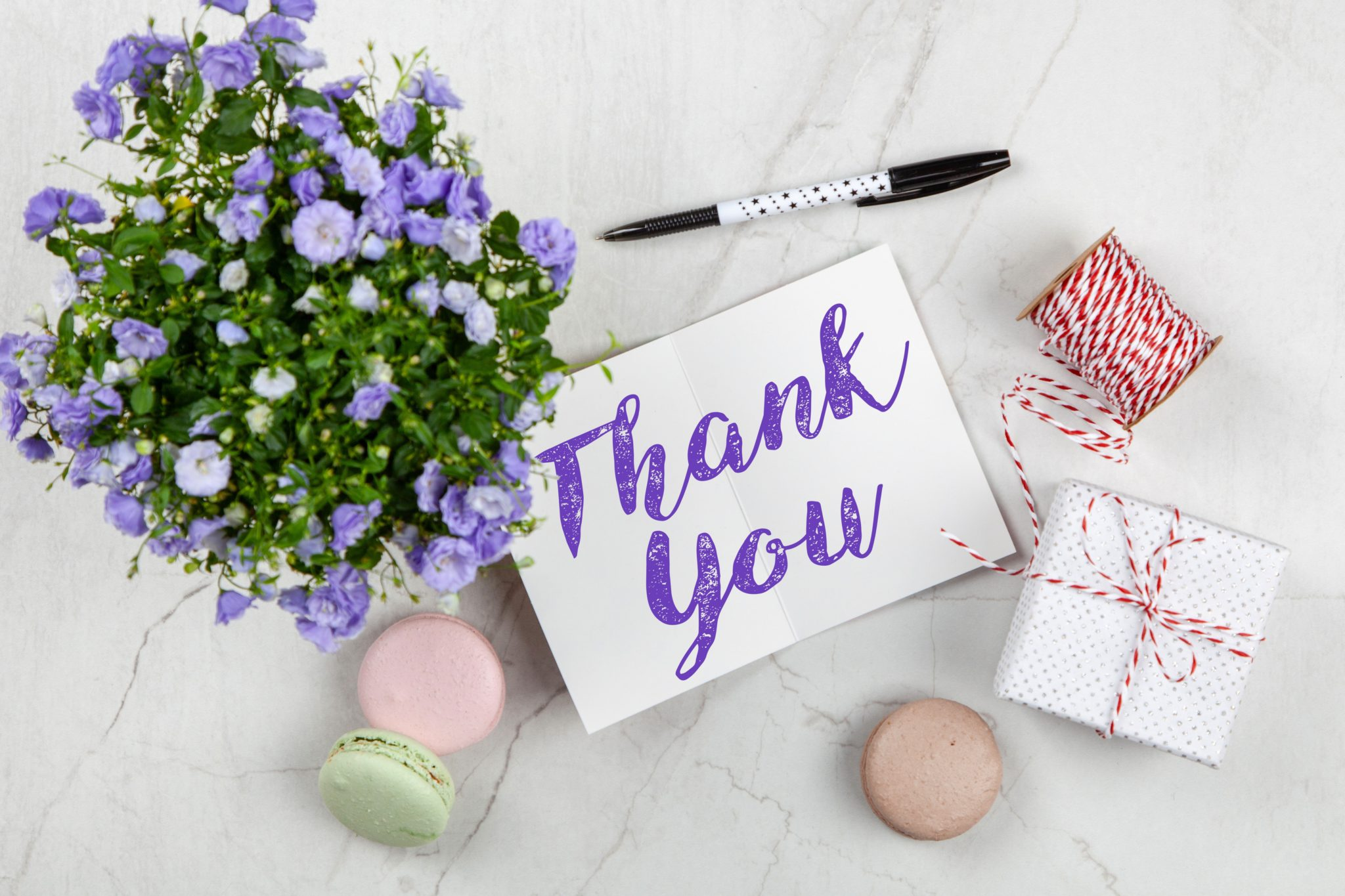 Purple flowers next to a thank you card