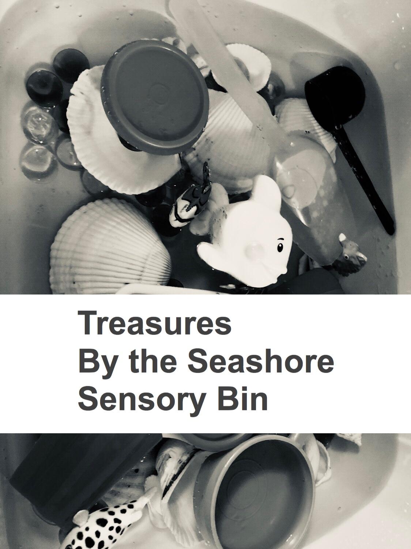 Treasures by the Seashore Sensory bin Pin