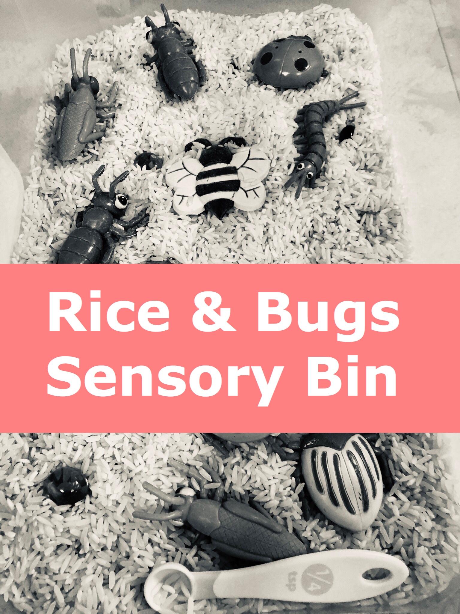 Rice & Bugs Sensory Bin pin