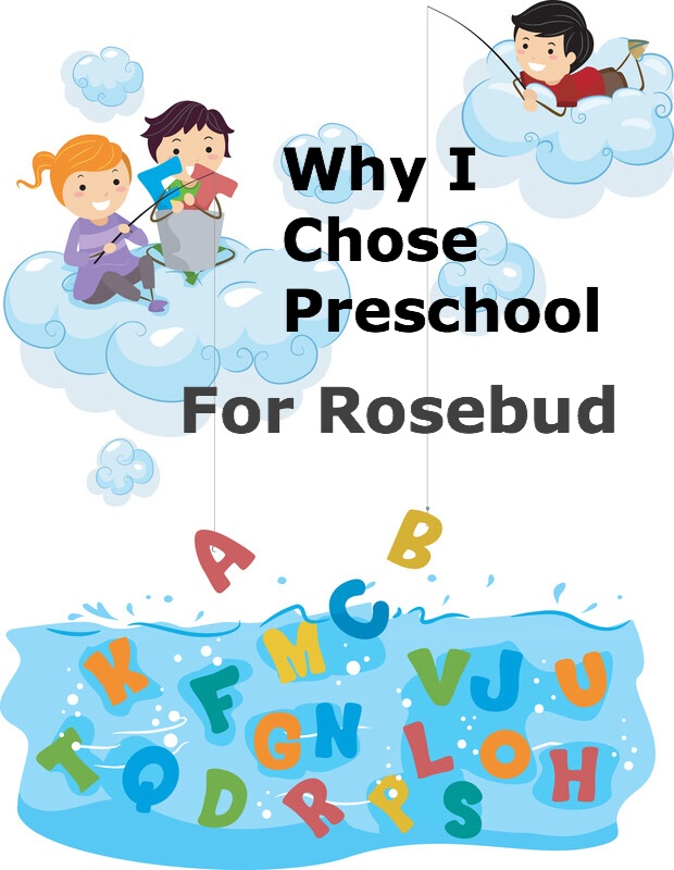 Why I chose preschool for Rosebud pin