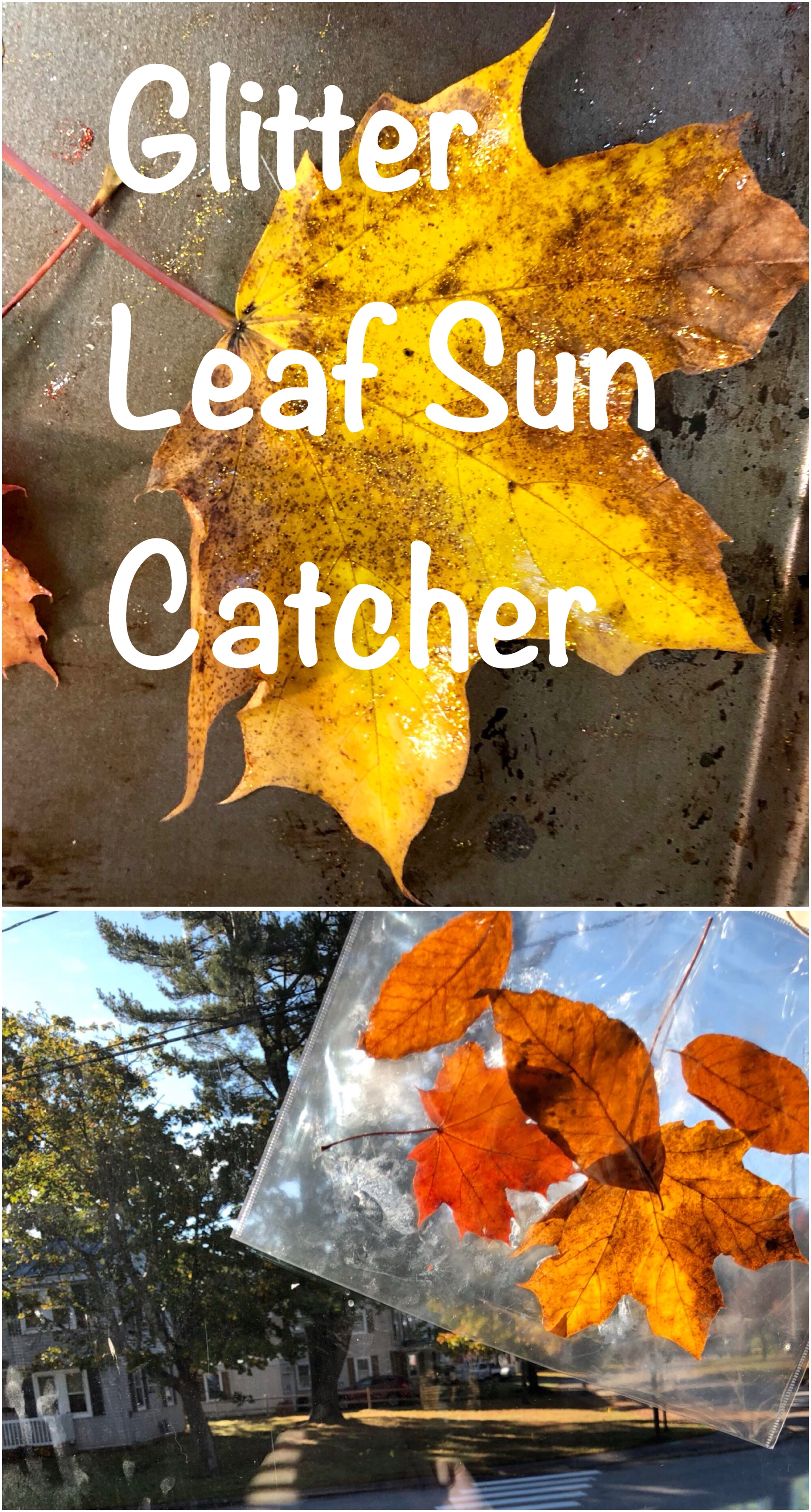Glitter Leaf Sun Catcher pin