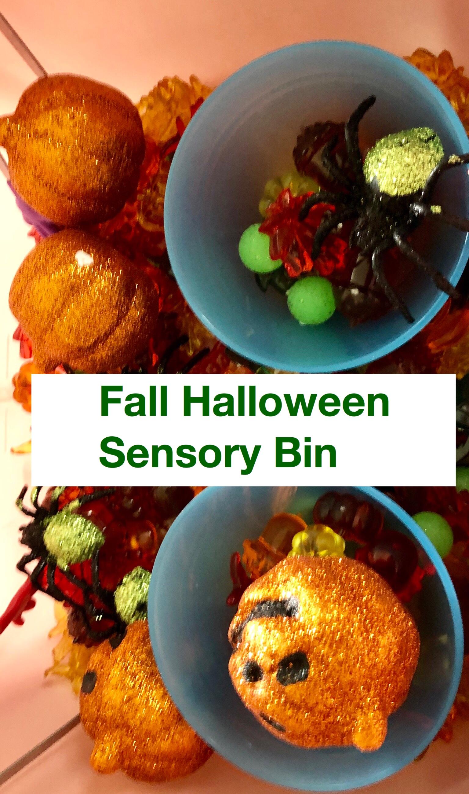 Fall Halloween Sensory bin pin