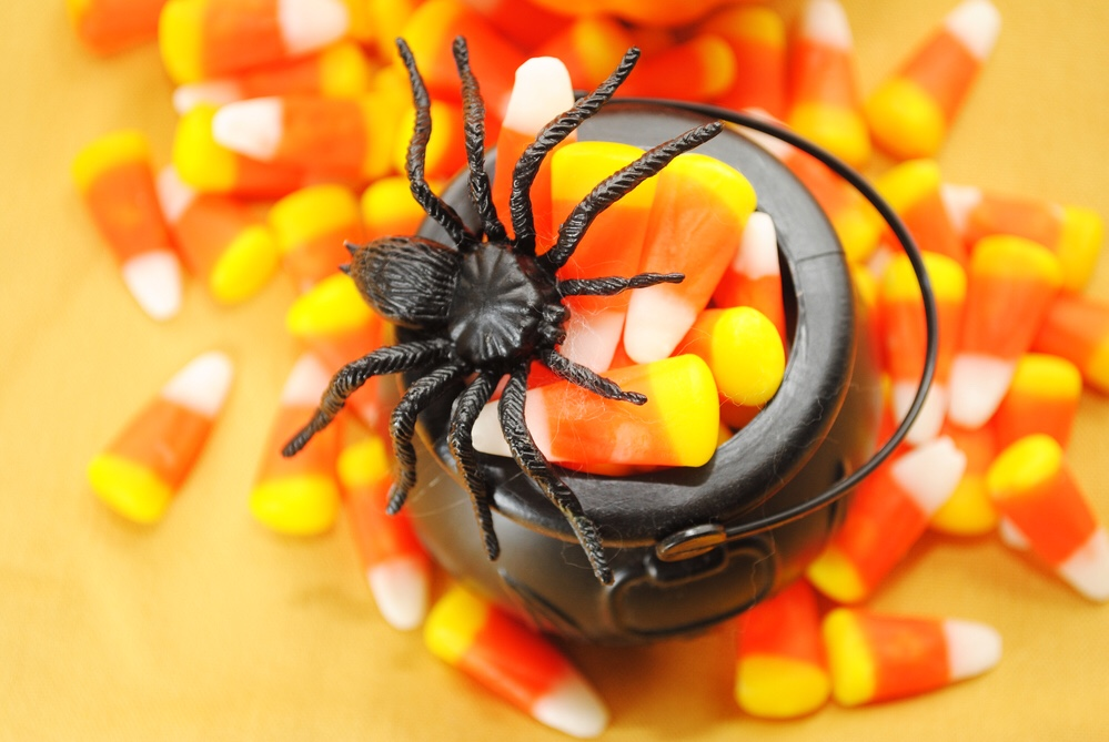 Bowl of candy corn with spider