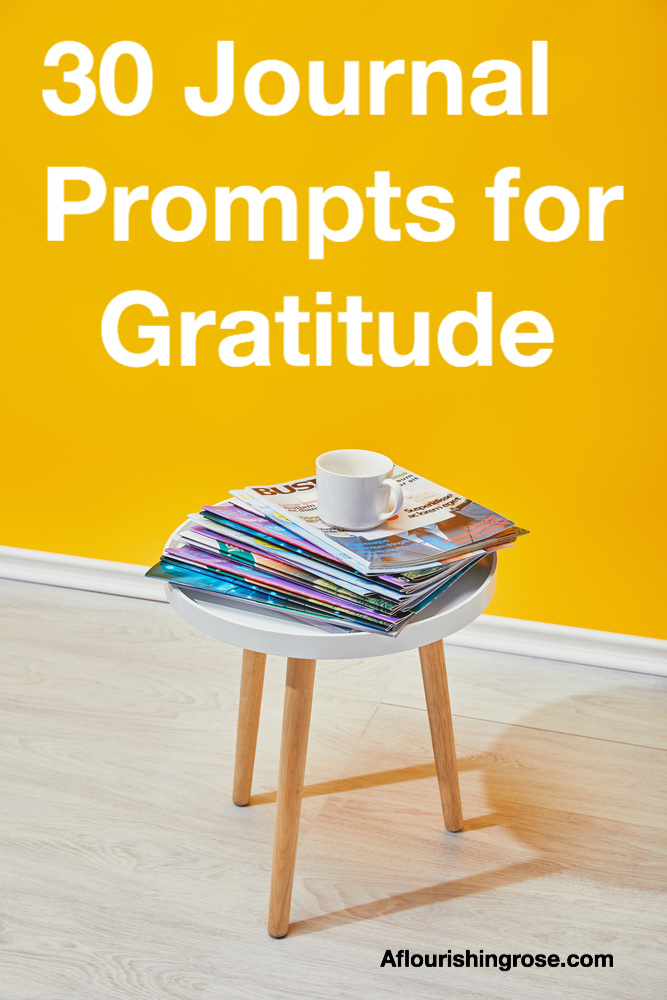 30 journal prompts for gratitude pin