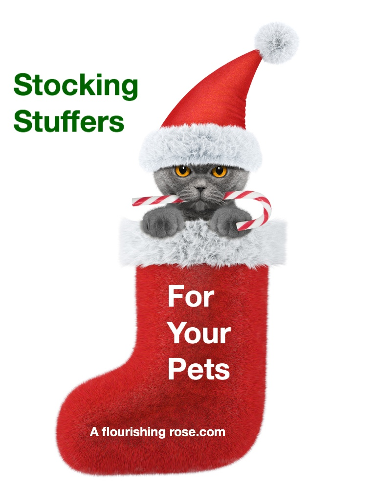 Stocking Stuffers for your Pets