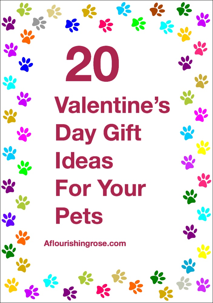 20 Valentine's Day Gift Ideas for Your Pets